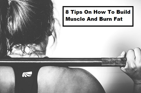 8 Tips On How To Build Muscle And Burn Fat